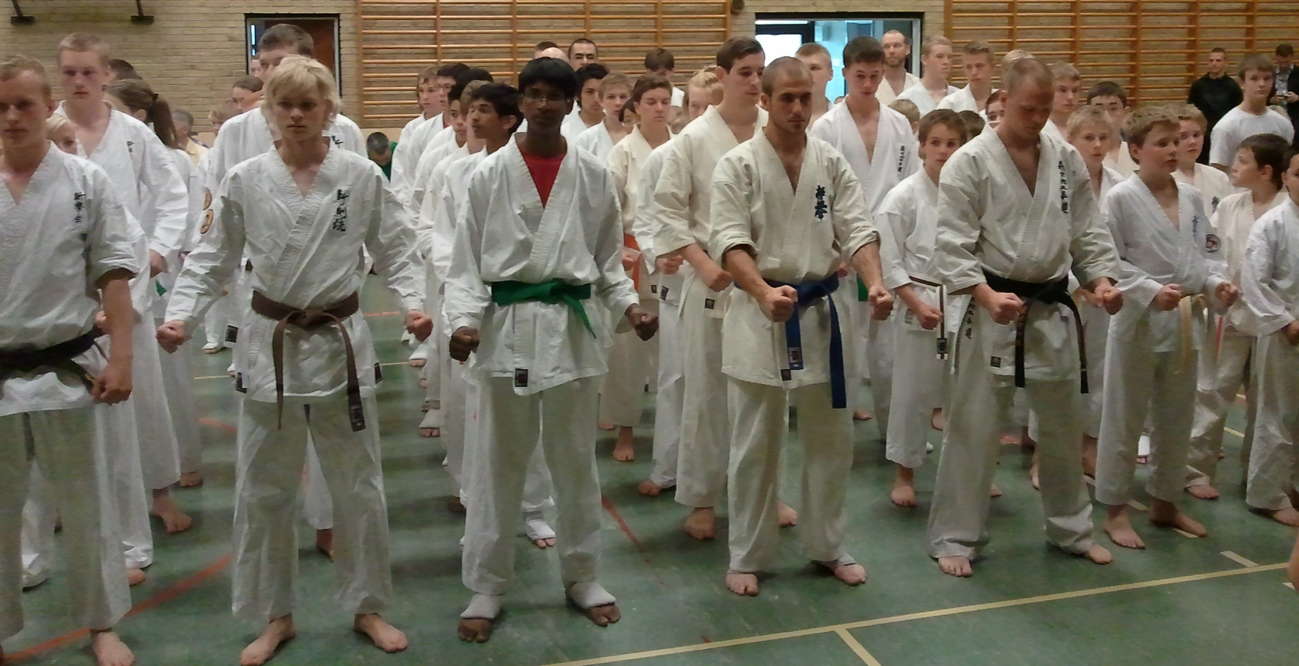 Lunds Kyokushin_ BS Cup_Danmark.jpg